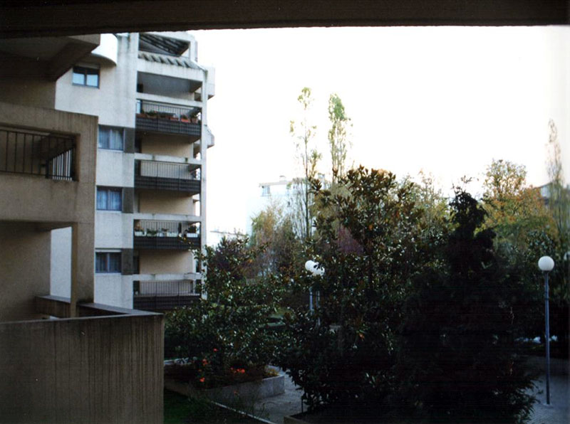 cour n° 8 av° Blum avec arbuste de 4 m de haut (4) avant arrachage
